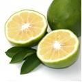 БЕРГАМОТ, плоды, СК СО2 экстракт, сверкритический, флюидный, Россия, 5 мл