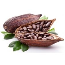 какао, бобы, СК СО2 экстракт, сверкритический, флюидный, Россия, 5 мл