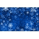 от ПЕРХОТИ, КУПАЖ 19, СК СО2 экстракт, сверкритический, флюидный, Россия, 5 мл