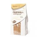 Пшеница отборная, можно проращивать, 500 гр